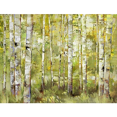 Portfolio Canvas ''Essence of Green'' Painting Print on Wrapped Canvas