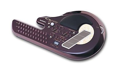 Suzuki QChord Digital Sound Guitar, 22