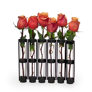 Danya B QB180 Six-Tube Hinged Vases on Rings Stands, Brown