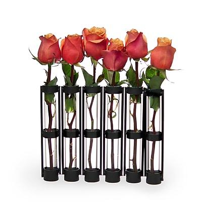 Danya B QB180 Six-Tube Hinged Vases on Rings Stands, Brown