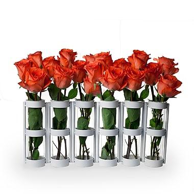 Danya B QB280W Six Wide Tube Hinged Vases, White