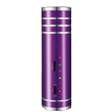 Supersonic® 93586113M Portable Rechargeable Speaker With FM Radio, Purple