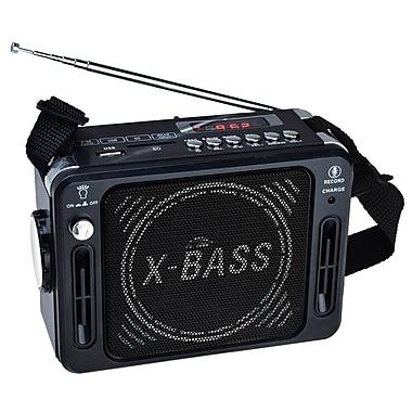 QFX® CS-151 Karaoke Multimedia Speakers With FM Radio