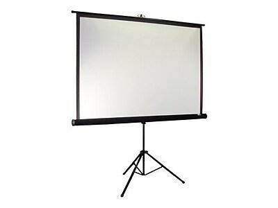 Elite Screens T113UWS1-PRO 113
