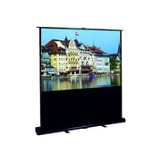 Elite Screens® ezCinema Plus Series 60inch Portable Projection Screen, 4:3, Black Casing