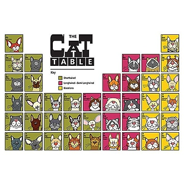 Printfinders The Cat Table by Anderson Design Group Graphic Art on Canvas; 24'' x 36''