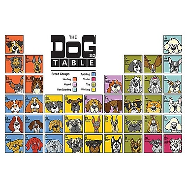 Printfinders The Dog Table by Anderson Design Graphic Art on Canvas