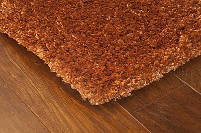 StyleHaven Shag Rust/ Brown Indoor Machine-made Polypropylene Area Rug (5'3
