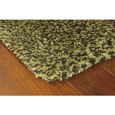 StyleHaven Shag Green/ Brown Indoor Machine-made Polypropylene Area Rug (4' X 5'9