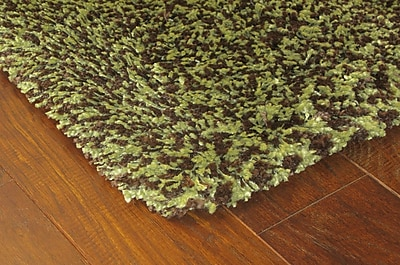 StyleHaven Shag Green/ Brown Indoor Machine-made Polypropylene Area Rug (6'7