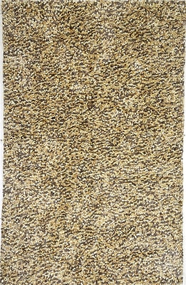 AMER Rugs Cozy Hand-Woven Caramel Area Rug; 2' x 3'