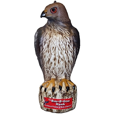 Bird B Gone MMRTH1 Hawk Decoy Bird Deterrent