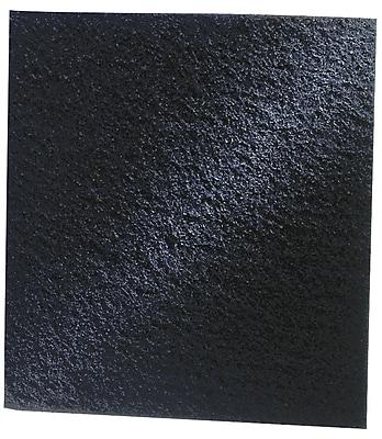 Danner/Pondmaster 12205 Foam Replacement Pads, 2/Pack
