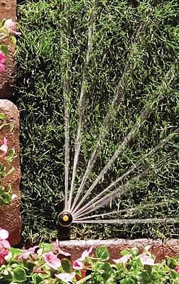 Rainbird 22SAQ Pop-up Mini Rotor, Black