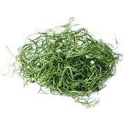Super Moss 26912 8 oz. Spanish Moss Preserved