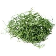 Super Moss 26917 16 oz. Spanish Moss Preserved