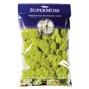 Super Moss 2 oz. Reindeer Moss