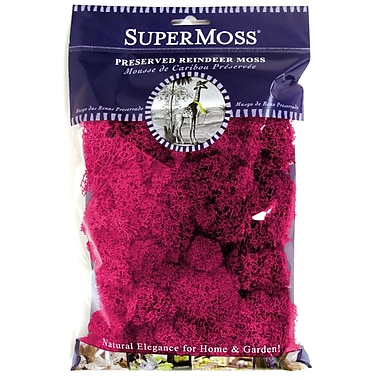 Super Moss 23164 Fuchsia Reindeer Moss, 2 oz.