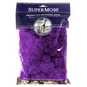 Super Moss Preserved Reindeer Moss