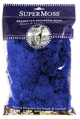 Super Moss 25128 Reindeer Moss, Royal Blue