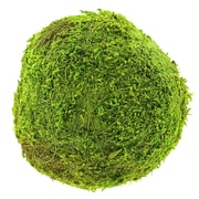 "Super Moss 21657 6"" Green Moss Ball"