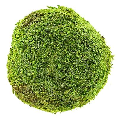 Super Moss 21657 6