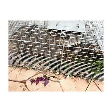 Havahart Steel Animal Cage Trap