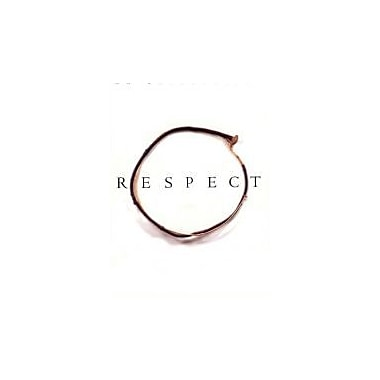 Respect: An Exploration, New Book (9780738203188)