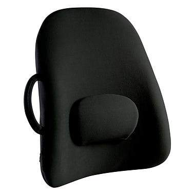 Lowback Backrest Support (LB-BLK-CA)