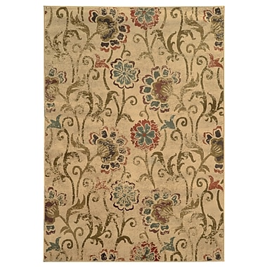 Style Haven Hudson 4877B Indoor Area Rug