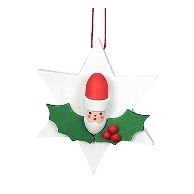 Alexander Taron Christian Ulbricht Santa on Star Ornament