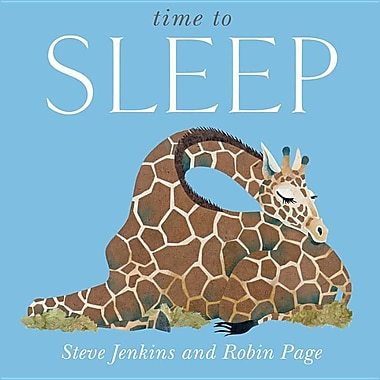 Time to Sleep Big Book