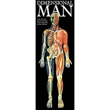 Dimensional Man