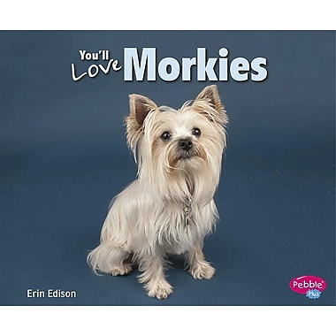 You'll Love Morkies