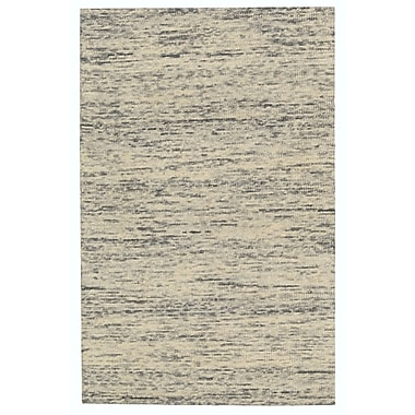 Nourison Sterling Hand-Tufted Beige/Gray Area Rug; 4' x 6'