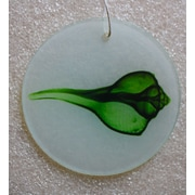 Radiant Art Studios X-ray Designs Green Shell Frosted Glass Ornament