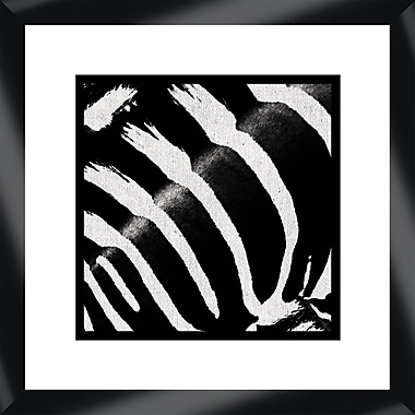 Melissa Van Hise Zebra I Framed Graphic Art