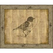 Melissa Van Hise Bird II Framed Graphic Art