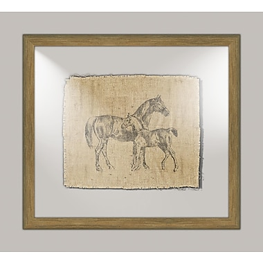 Melissa Van Hise Horse I Framed Graphic Art