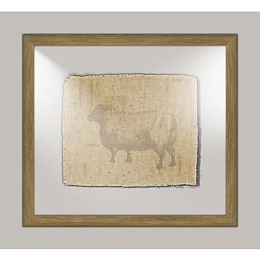 Melissa Van Hise Sheep II Framed Graphic Art