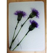 Radiant Art Studios X-ray Designs Tempered Glass Cutting Board; 8'' x 11''