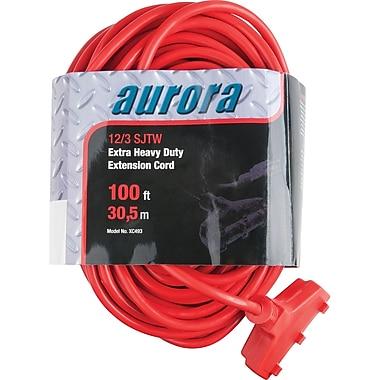 Aurora Tools - Rallonge en vinyle ultrarobuste pour l'extérieur, triple fiche, 100 pi