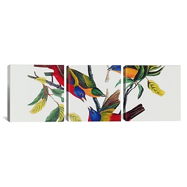 iCanvas ''Painted Bunting'' by John James Audubon 3 Piece Painting Print on Wrapped Canvas Set
