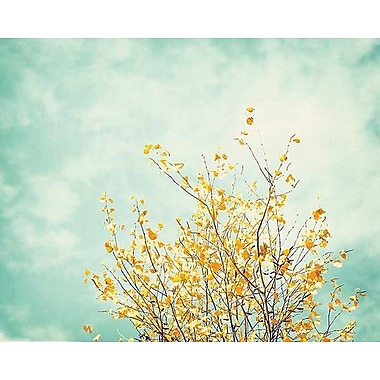 Printfinders Gentle Whisper by Carolyn Cochrane Photographic Print on Wrapped Canvas