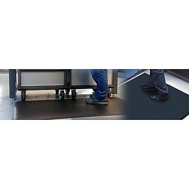 Protex Premier-Tred Solid Doormat; 3' x 2'