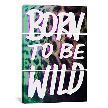 iCanvas Leah Flores Born to Be Wild 3 Piece Graphic Art on Wrapped Canvas Set