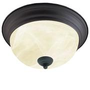 Thomas Lighting Ceiling Essentials 2-Light Flush Mount; Bronze