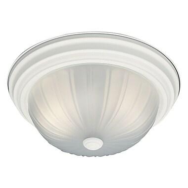 Thomas Lighting Ceiling Essentials 2-Light Flush Mount; Textured White