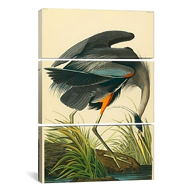 iCanvas Great Blue Heron by John James Audubon 3 Piece Painting Print on Wrapped Canvas Set
