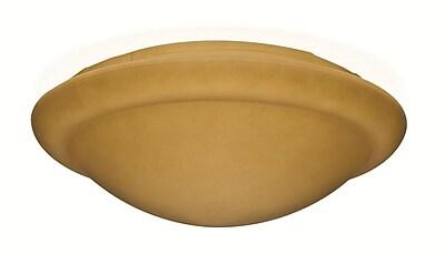Casablanca Fan Stepped Globe Low Profile 12.9'' Glass Fan Bowl Shade